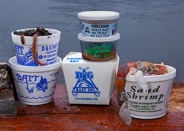 Packaged Live Fishing Bait